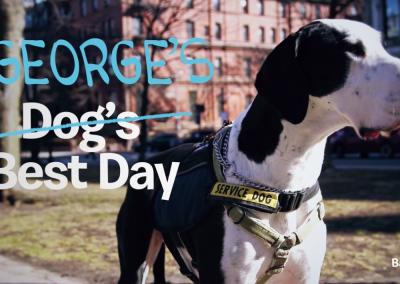Dog's Best Day